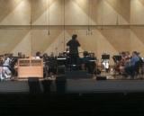 Ravinnia Orchestra